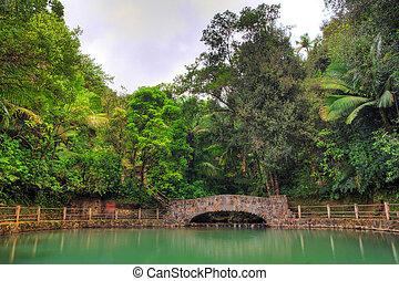 El Yunque pool