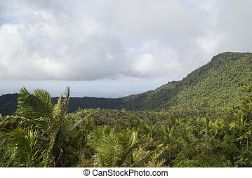 El Yunque Saddle
