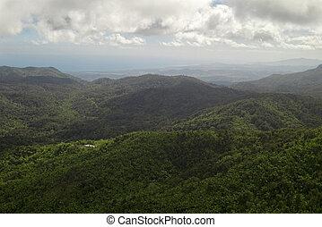 El Yunque View Toward Caribbean Ocean