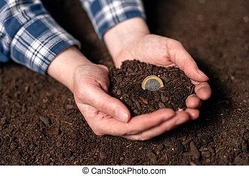 elaboración, ingresos, de, actividad agrícola, y, ganancia, extra, dinero