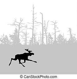 eland, hout, silhouette, achtergrond