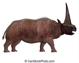 Elasmotherium Side Profile
