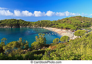 Elba island - beach in Fetovaia
