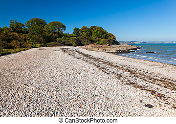 Elberry Cove Brixham Devon - The beautiful shingle beach at...