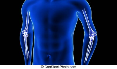 Elbow Pain close-up animation. Blue Human Anatomy Body 3D ...