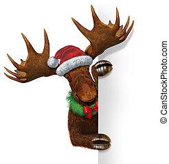 elch, leer, weihnachten, zeichen