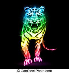 eld, färgrik, tiger.