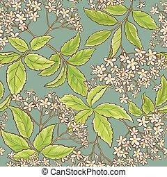 elderflower vector pattern