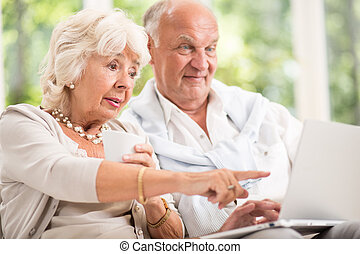 Elderly couple and modern technology
