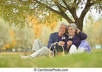 Elderly couple at a picnic in the park