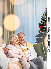 Elderly couple near christmas tree