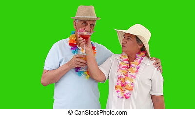 Elderly couple on the beach looking at the landscape