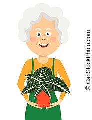 Elderly gardener woman holding flower in a pot on white