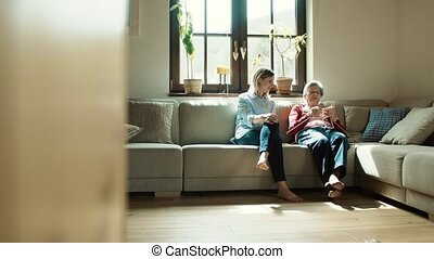 Elderly grandmother and adult granddaughter at home,...