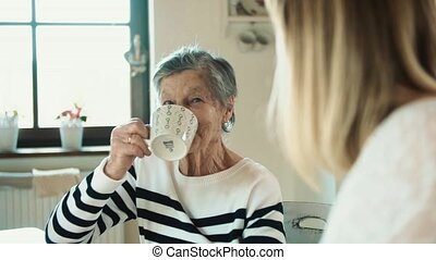 Elderly grandmother with an adult granddaughter drinking...