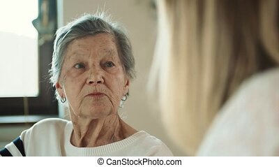 Elderly grandmother with an adult granddaughter talking at home.
