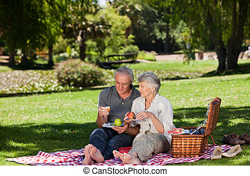 elderly kopplar ihop, ha picknick, i trädgården