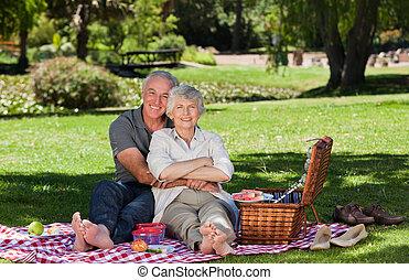 elderly kopplar ihop, ha picknick, in, den, g