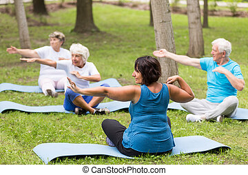 Elderly people exercising in a park