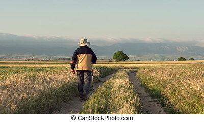 Elderly pilgrim walking on famous pilgrimage route of camino...