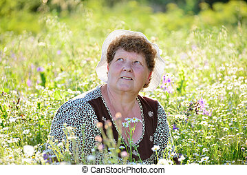 elderly woman on meadow in summer day