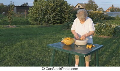 Elderly woman separates chanterelle mushrooms