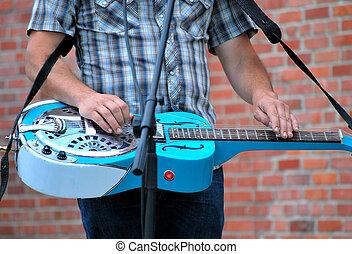Electric dobro guitar.