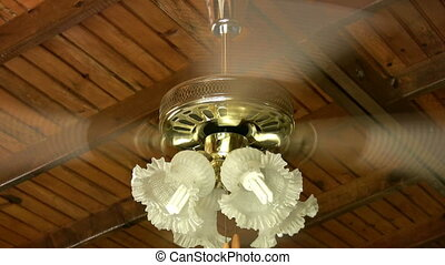 Electric fan and lamp spinning