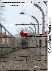 Electric fence in former Nazi concentration camp Auschwitz I...