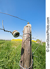 Electric fence - energizer on fence in agriculture landscape