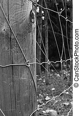Electric fence - An electric fence