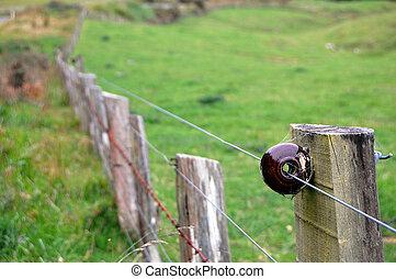 Electric fence on farm, Banks Peninsula, New Zealand
