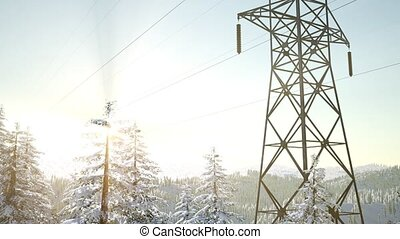 electric line at sunrise in snow covered forest