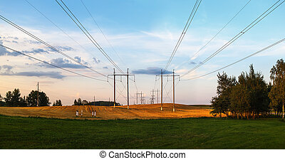 Electric pillars in a field