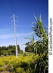Electric power line - electric power line tower in clear...
