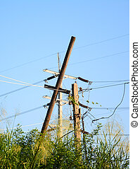 electrical bamboo post