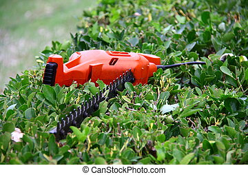 pruning tool on green shrub - electrical pruning tool on...