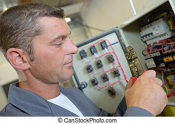 electricista, en, cajade fusibles