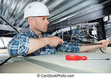 electricista, fijación, neón, en, el, techo