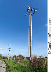 Electricity Pole In Rural Context