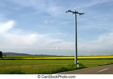 electricity pole in rural field