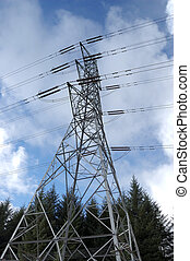 Electricity pylon in forest wide an