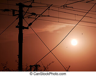 Electricity wiring pole during evening sunset time beautiful frame image