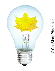 Electrobulb with maple leaf