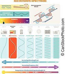 Electromagnetic Waves: Microwave Spectrum. Vector illustration diagram with wavelength, frequency, harmfulness and wave structure.