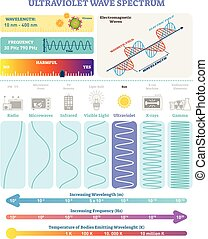 Electromagnetic Waves: Ultraviolet Wave Spectrum. Vector illustration diagram with wavelength, frequency, harmfulness and wave structure. Science educational information. Info poster.
