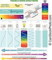 Electromagnetic Waves: Visible Wave Spectrum. Vector...