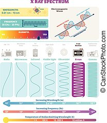 Electromagnetic Waves: X-ray Wave Spectrum. Vector...