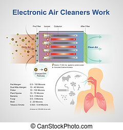 Electronic air cleaner work - An air purifier is a device...