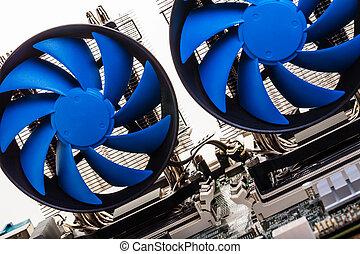 blue fans close-up